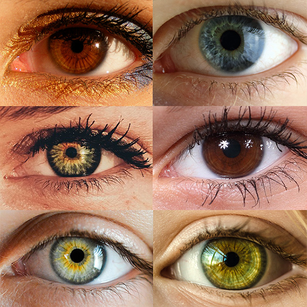 Eye Color Trivia Orlando Fl Vision Health Institute